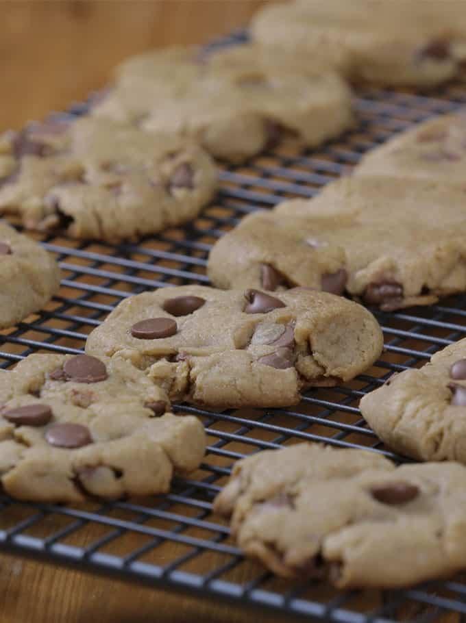 no bake chocolate chip cookies