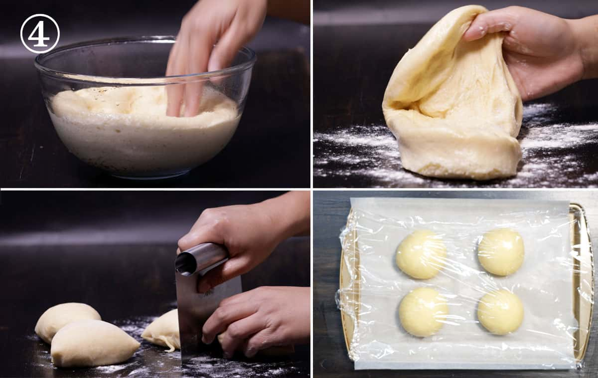 step 4 divide and rise the dough